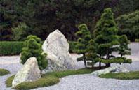 Садовый бонсай в Монреальском ботаническом саду